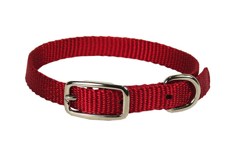 Hamilton Single Nylon Collar Standard Colours 3/8