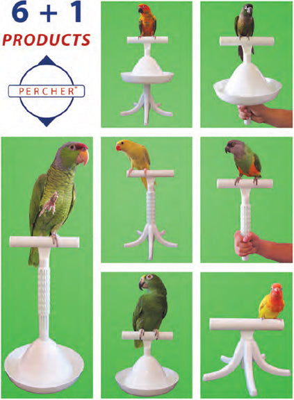 Caitec Percher For Birds