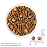 Wellness CORE RawRev Indoor+ 100% Raw Turkey Cat Kibbles