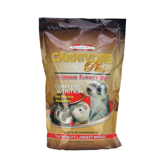 Marshall Carnivore Plus High Protein Ferret Diet 3.5 lb - Exotic Wings and Pet Things