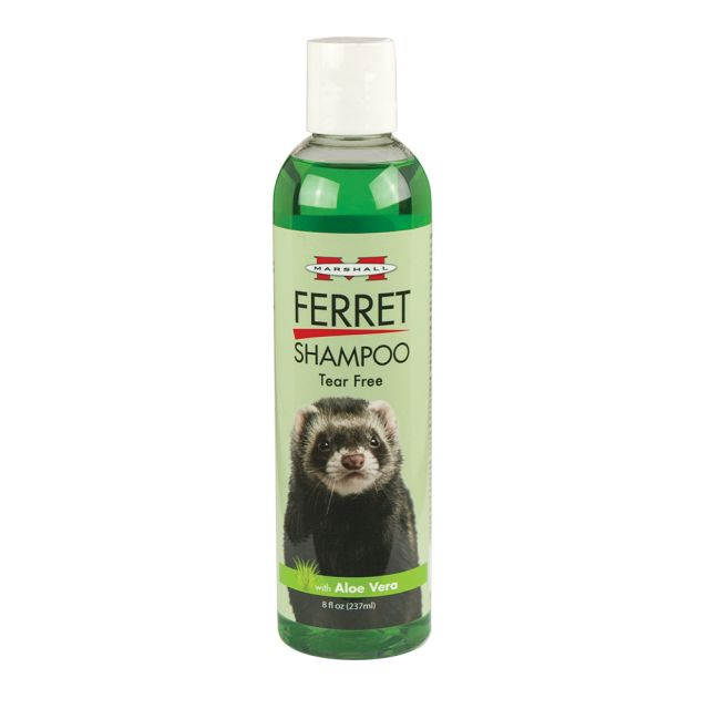 Marshall Tear Free Tea Tree Shampoo for Ferrets 8 oz - Exotic Wings and Pet Things