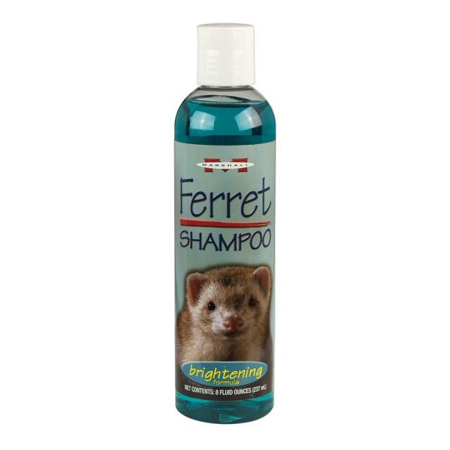 Marshall Brightening Shampoo for Ferrets 8 oz - Exotic Wings and Pet Things