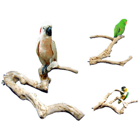 King's Cages Java Multi Branch Enrichment Perch - Exotic Wings and Pet Things