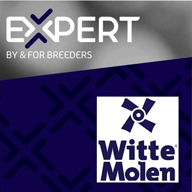 Witte Molen Expert Egg Food Original - Exotic Wings and Pet Things