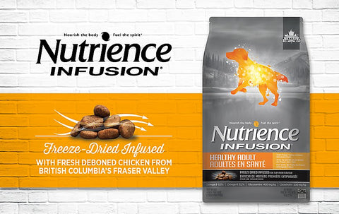 Nutrience Infusion Healthy Adult - Chicken - 22 lbs - Exotic Wings and Pet Things
