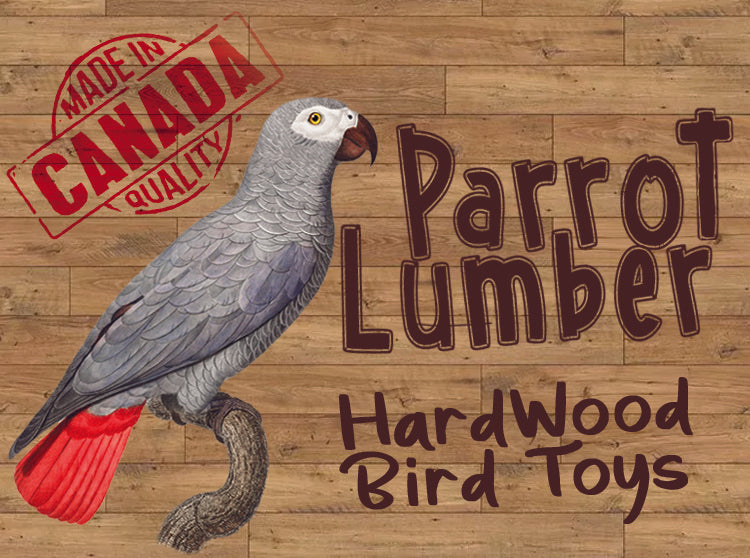 Parrot Lumber 064 Wood Boing Medium Toy