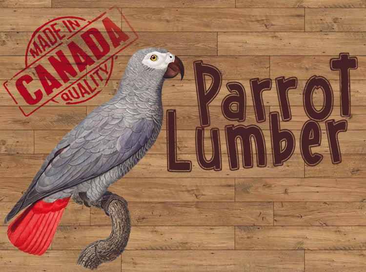 Parrot Lumber 3002 This & That Toy