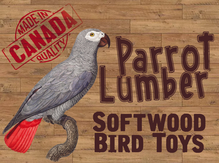 Parrot Lumber 1001 Chain Gang Toy