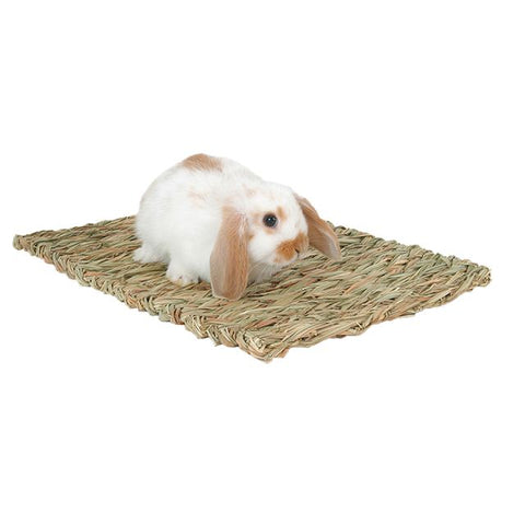Marshall Woven Grass Mat - Exotic Wings and Pet Things
