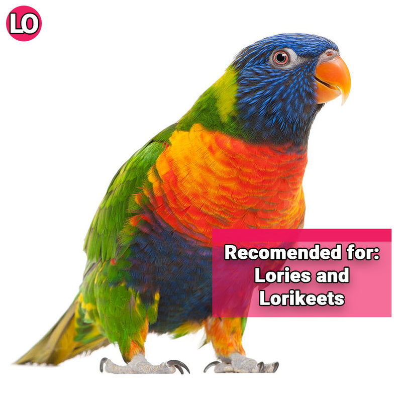 Quiko Lory Food 750g (1.65lbs) Only Canadian Supplier This Size! :)