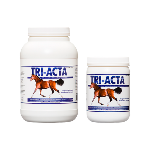 TRI-ACTA Regular Strength Equine Mobility Support for Sport/Working & Retired Horses