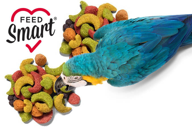 ZuPreem FruitBlend Daily Nutrition Large Parrot Pellet - Exotic Wings and Pet Things