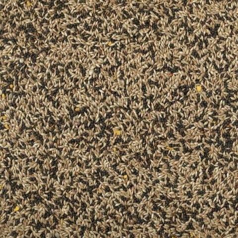 Mixed Canary Seed by Conestogo Bird Seed Company - Exotic Wings and Pet Things