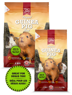 Martin Mills Extruded Guinea Pig Food