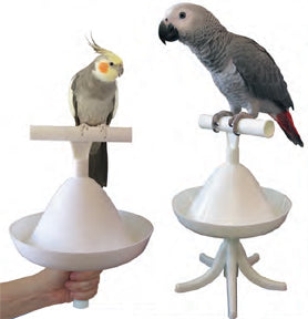 Caitec Percher For Birds - Exotic Wings and Pet Things