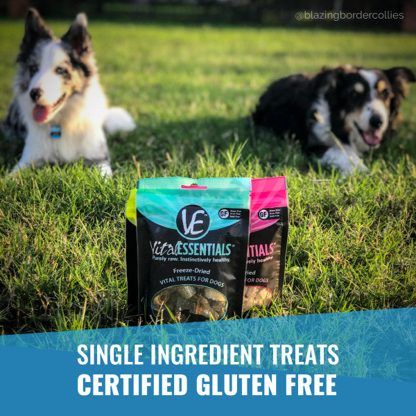 Vital Essentials MINNOWS Freeze-Dried Dog Treat