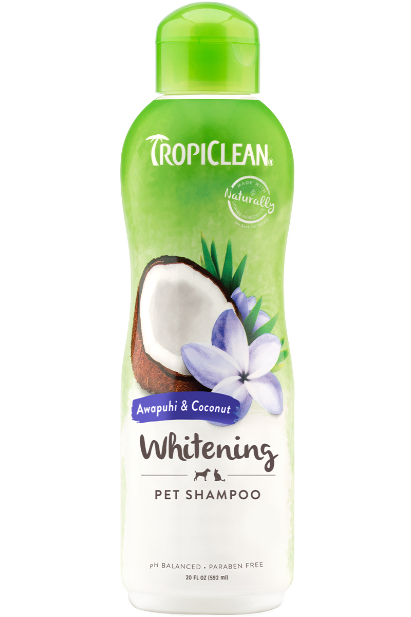 TropiClean Awapuhi & Coconut Whitening Shampoo 20 oz - Exotic Wings and Pet Things