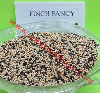 Fancy Finch Wild Bird Seed with Nyjer by Conestogo Bird Seed Company - Exotic Wings and Pet Things