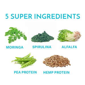 Your Superfoods skinny protein organic ingredients including, moringa, spirulina, alfalfa, pea protein and hemp protein