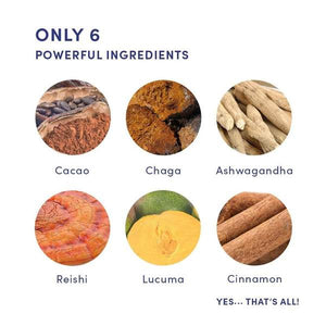 list of ingredients including cacao, chaga, ashwagandha, reishi, lucuma and cinnamon