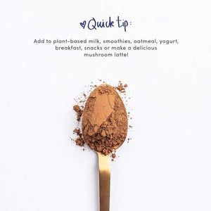 spoon of mushroom superfood powder