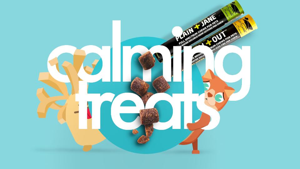 Calming Pet Treats & Toys For Cats & Dogs.