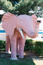 Load image into Gallery viewer, Pink Elephant