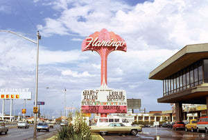 Vintage Flamingo Sign