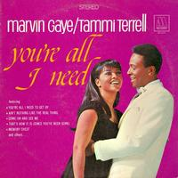 Vinyl - Marvin Gaye and Tammi Terrell - You're All I Need