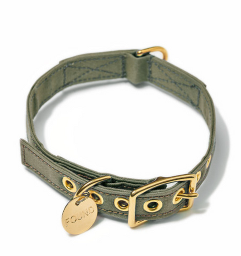 Found My Animal Olive Cotton Canvas Cat + Dog Collar