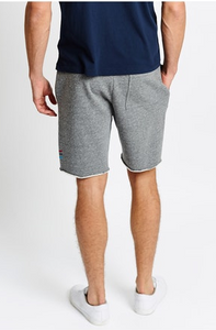 Sol Angeles Essential Sol Flag Short in Heather