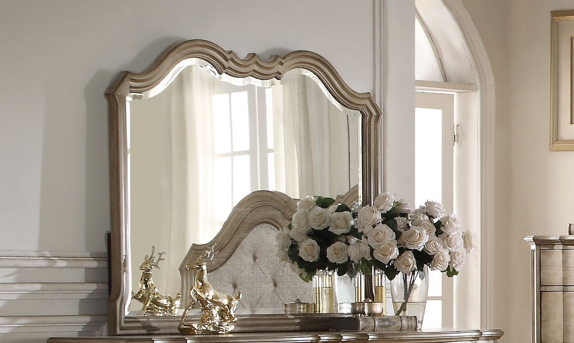 Acme Chelmsford Landscape Mirror in Antique Taupe 26054 image