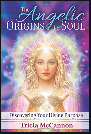 Angelic Origins of the Soul  by McCannon