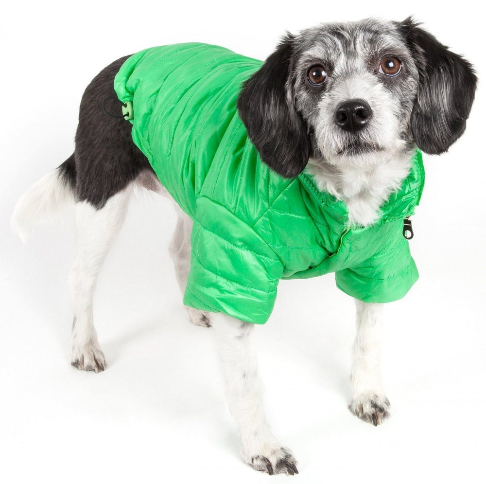 Pet Life Adjustable Mint Green Sporty Avalanche Dog Coat with Pop Out Zippered Hood