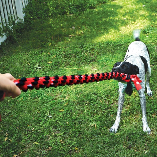 KONG Signature Rope Mega Dual Knot Dog Toy