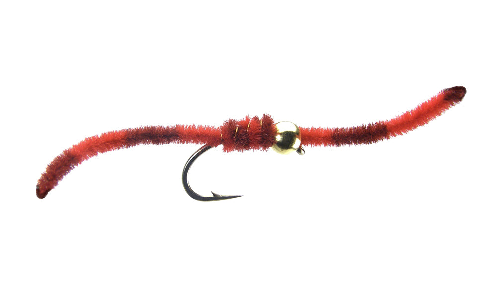 Tiger Worm - Red (12 Pack)