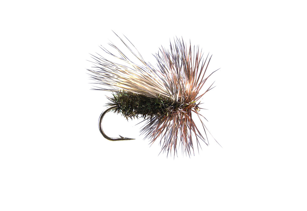 Peacock Caddis (12 Pack)