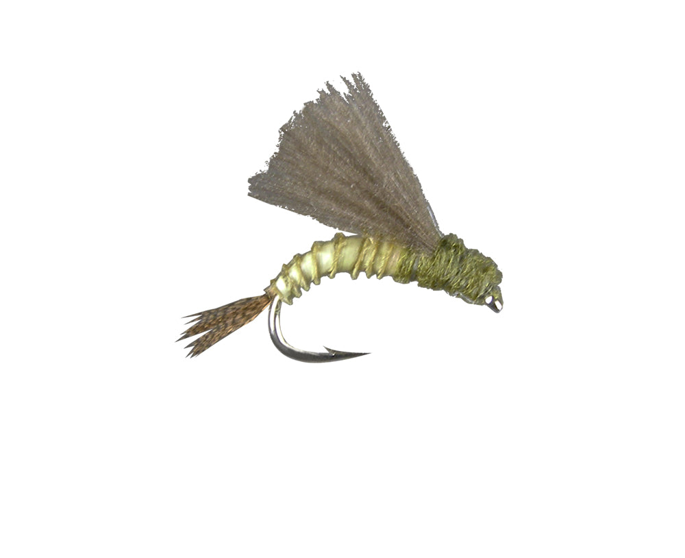 CDC Emerger - BWO (12 Pack)
