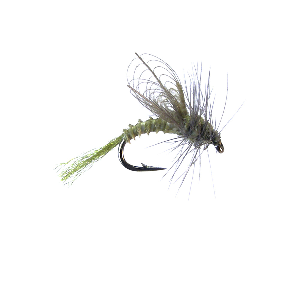 CDC Winged Emerger - BWO (12 Pack)