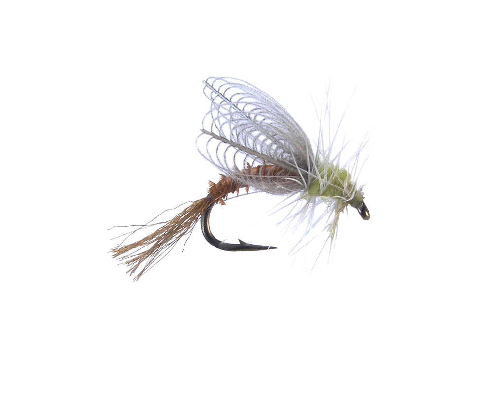CDC Winged Emerger - PMD (12 Pack)