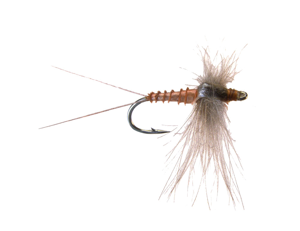 CDC Spinner - Brown Drake (12 Pack)