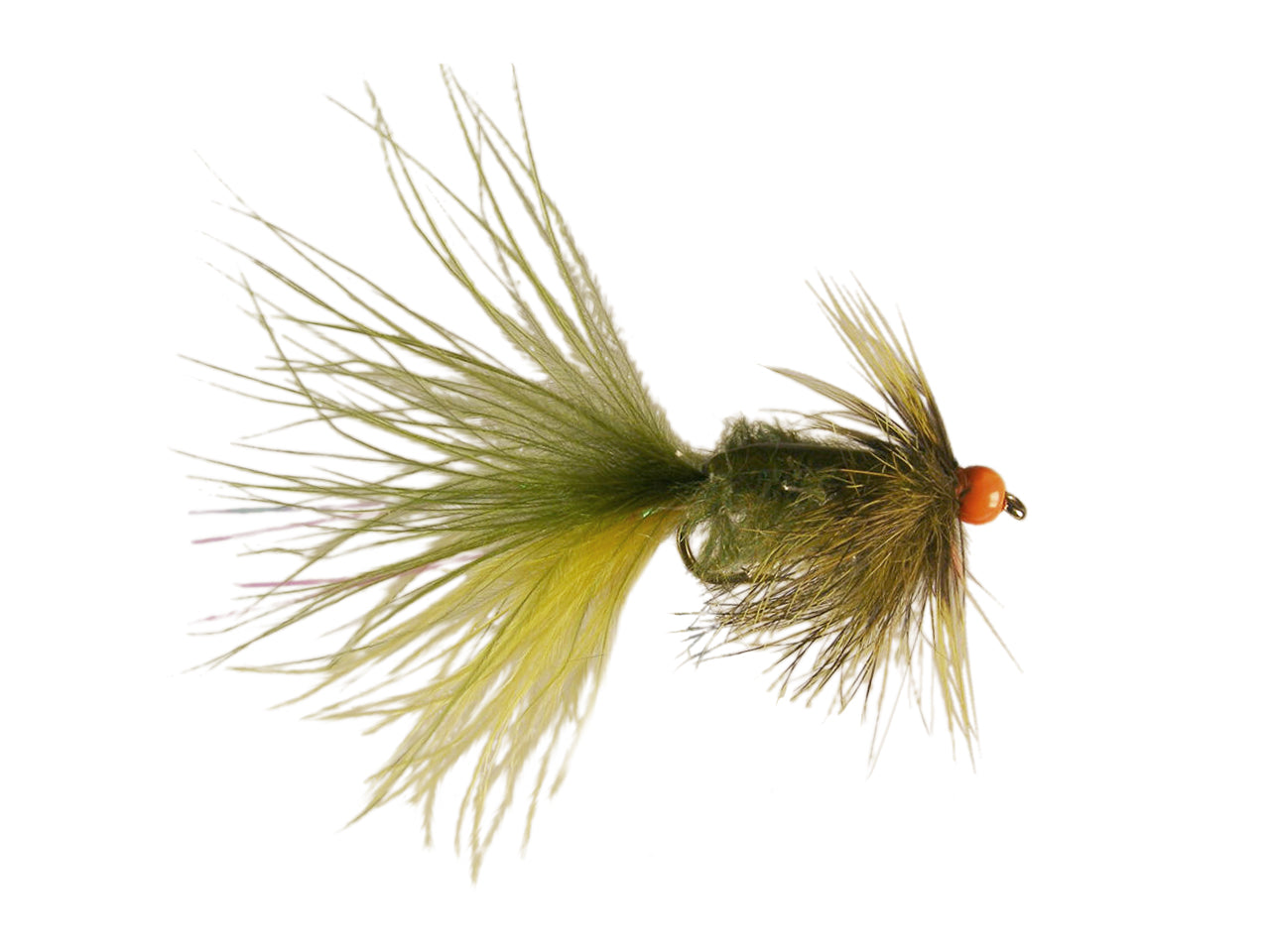 Keller's Boat Launch Creep - Olive (12 Pack)