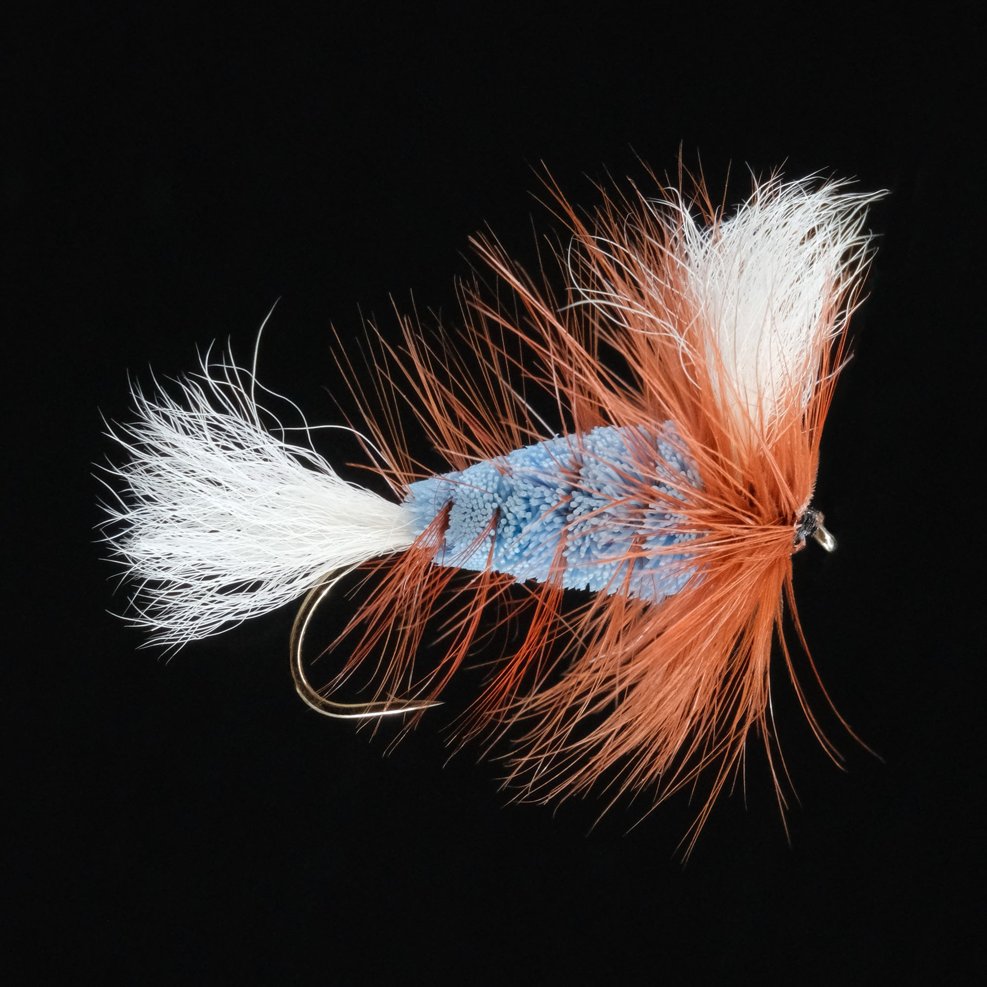 Wulff Bomber - Light Blue/ White Tail/ Brown Hackle