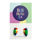 Blue Beetle Co rainbow lorikeets