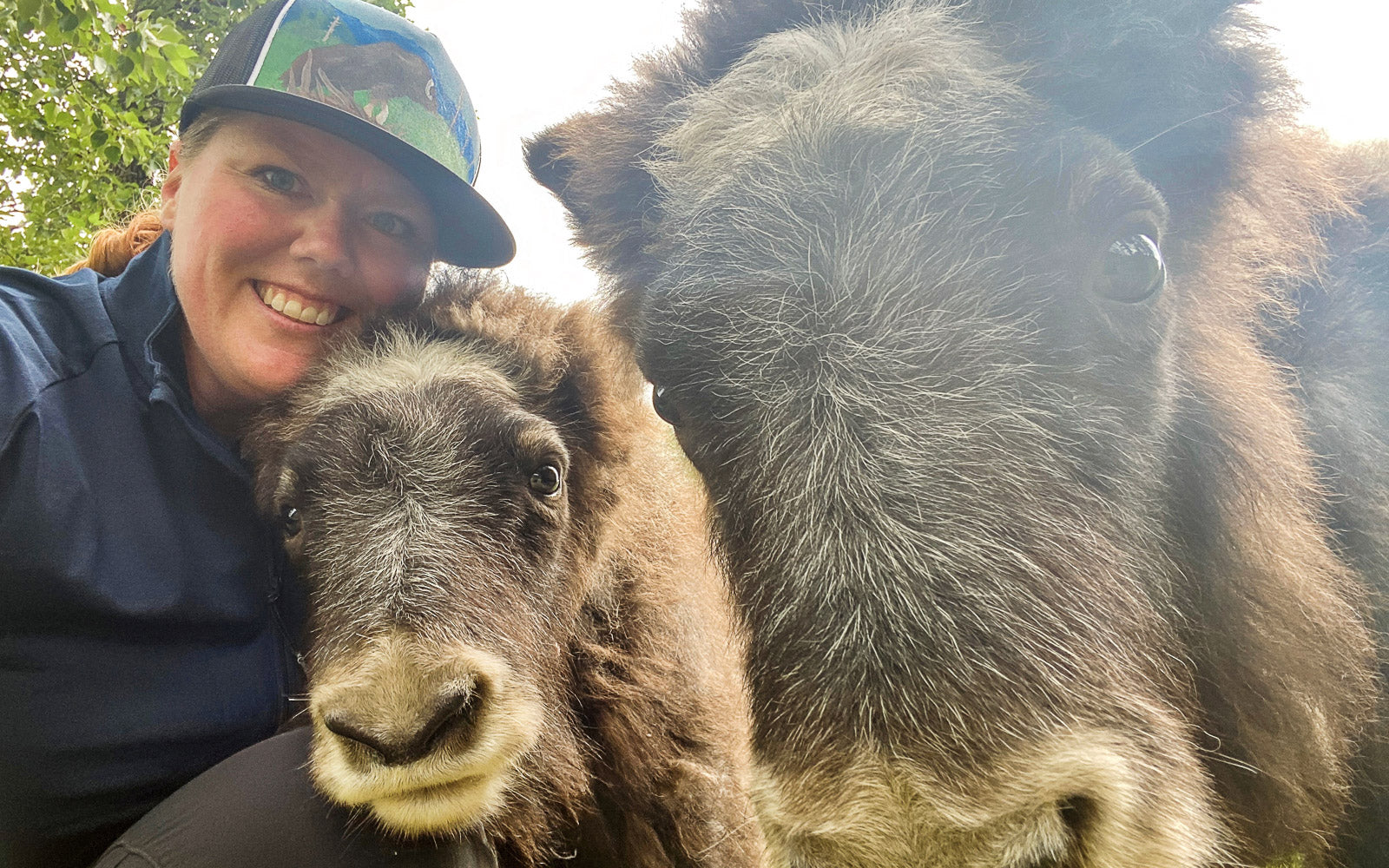 Image of Nicole Gelis with two muskox at the AWCC