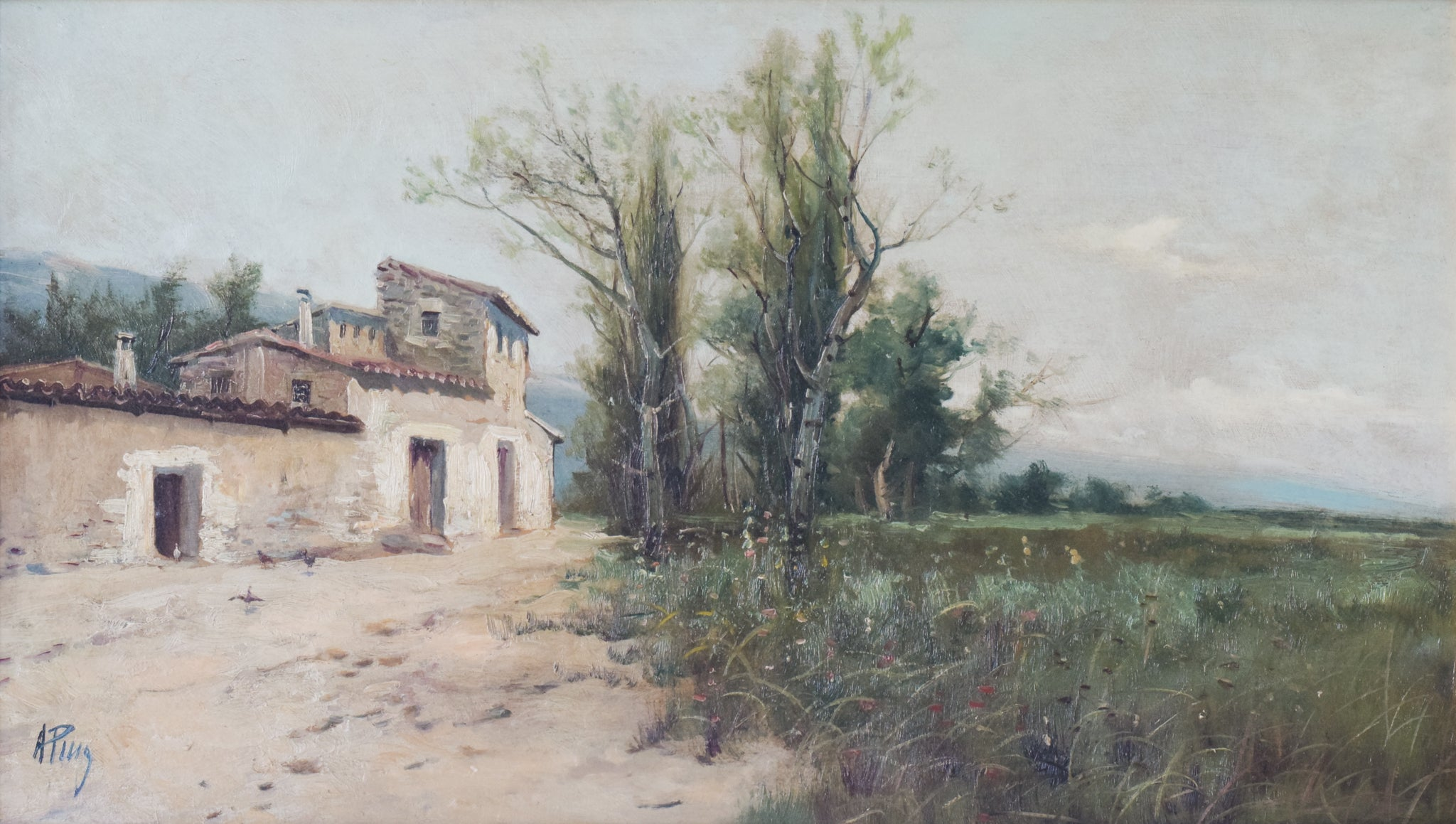 Spanish Landscape with Farmhouse and Wildflower Meadow