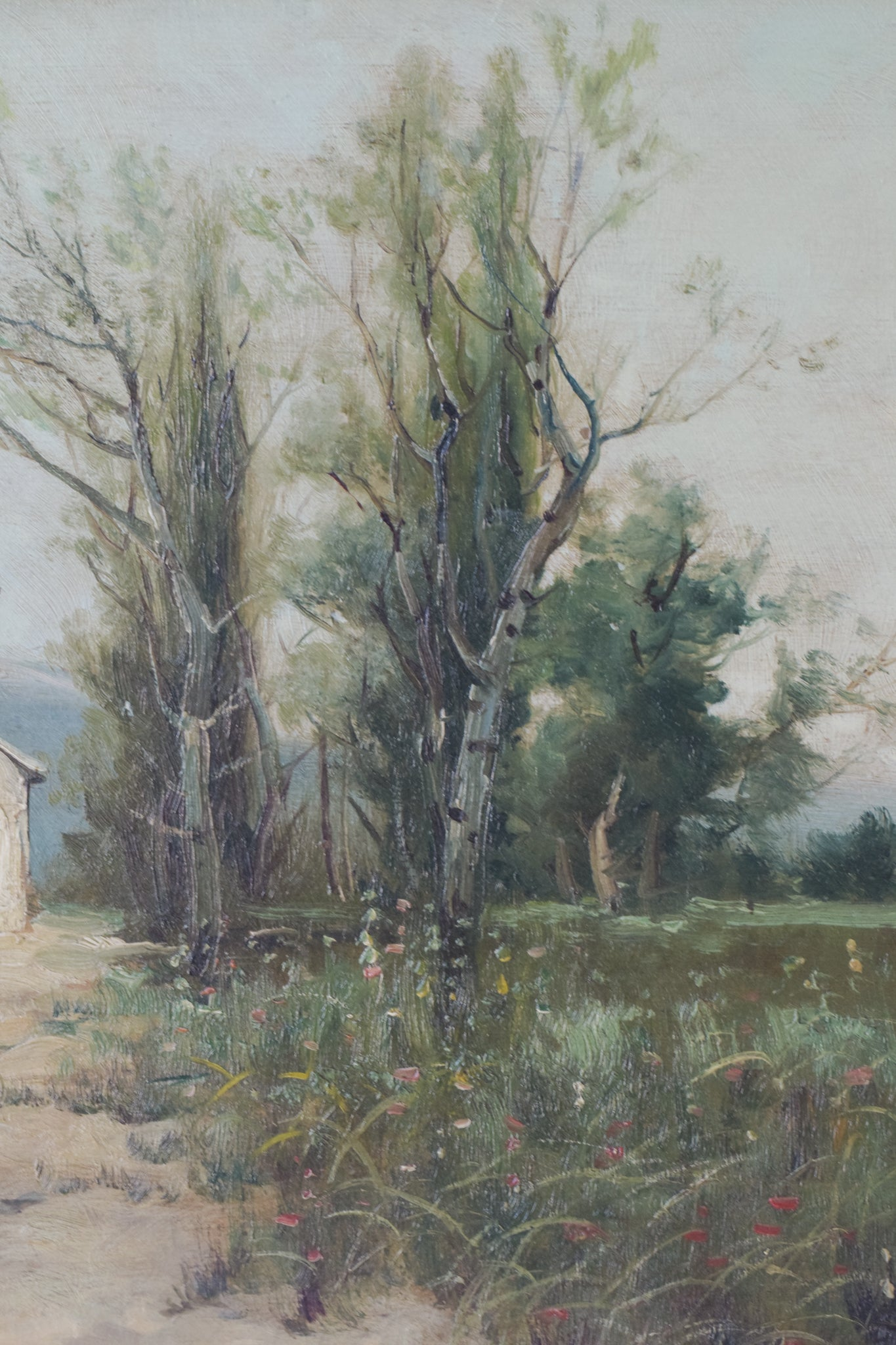 Spanish Landscape with Farmhouse and Wildflower Meadow_Detail 2