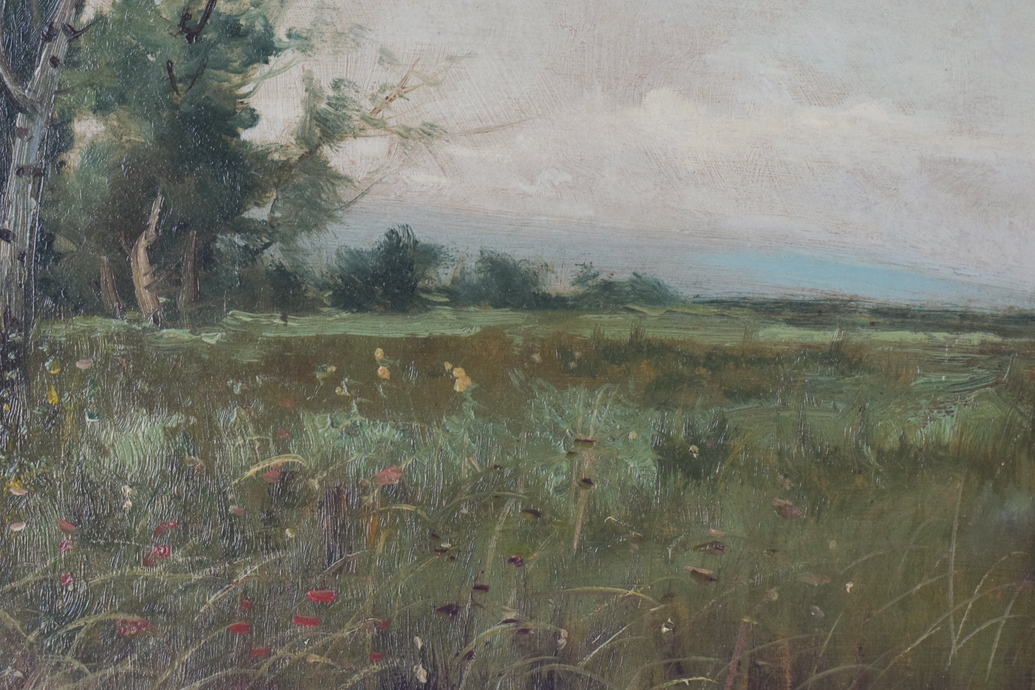 Spanish Landscape with Farmhouse and Wildflower Meadow_Detail 3