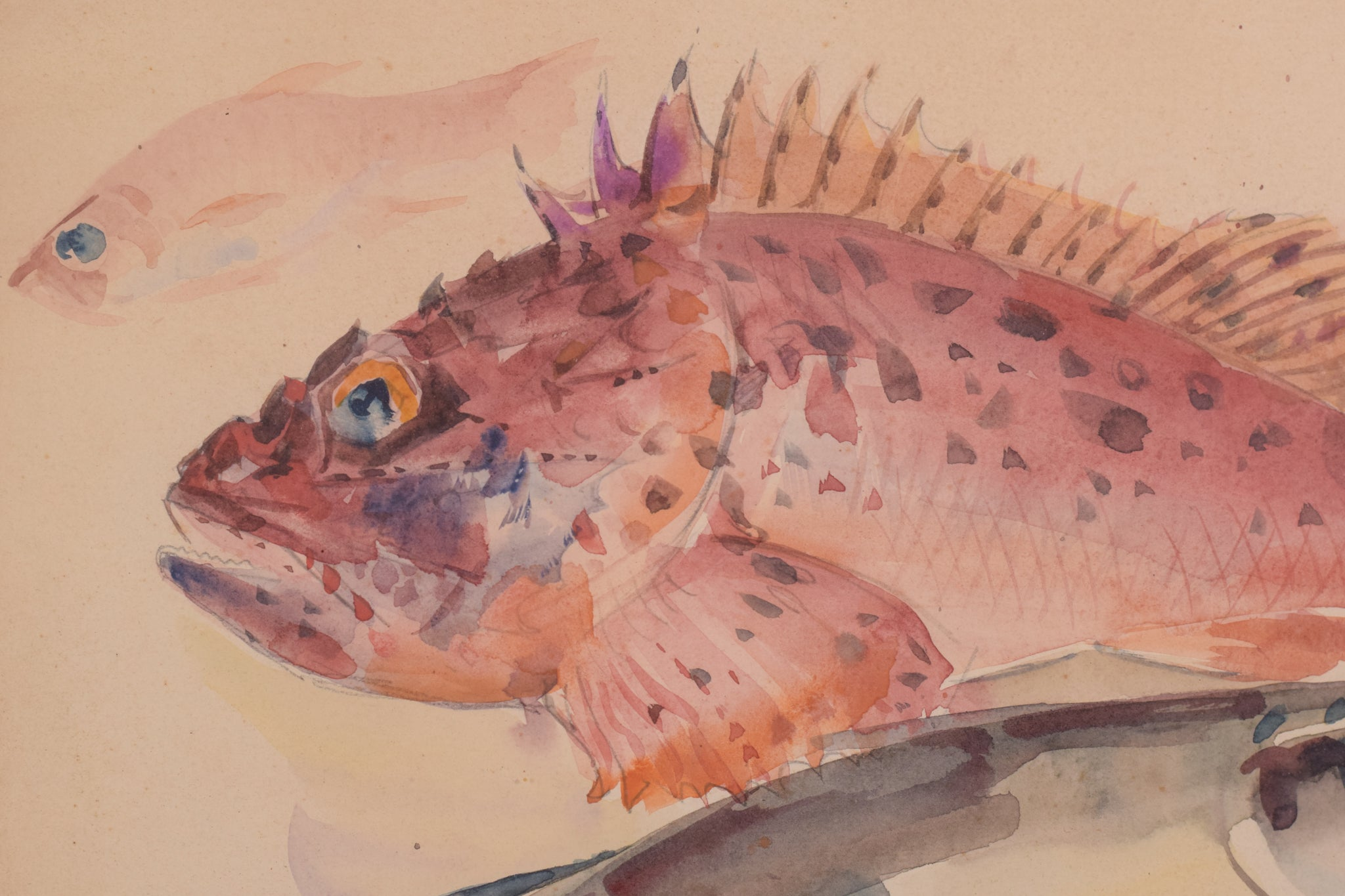 Watercolour Fishes