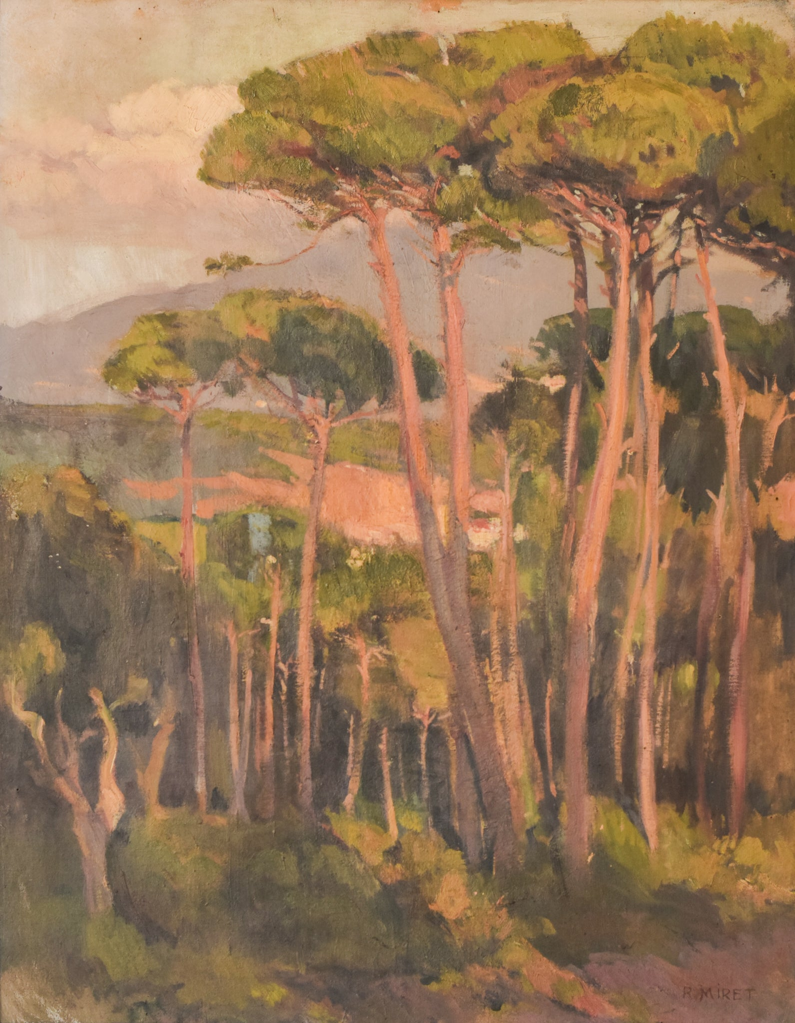 Impressionist Landscape of Trees Bathing In a Golden Light. Oil on Canvas By Ramon Miret